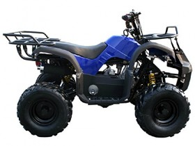 Sports 4 Wheeler For Adults