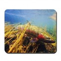 Best Fly Fishing Mouse Pad